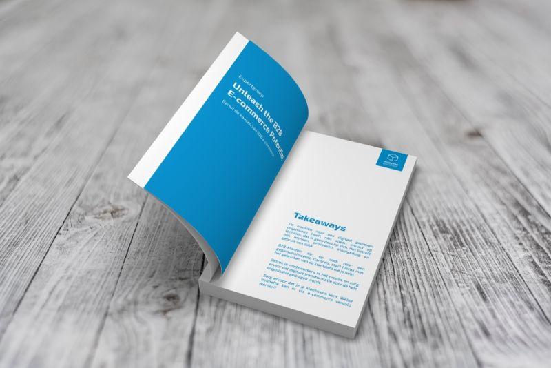 Unleash-the-B2B-ecommerce-potential
