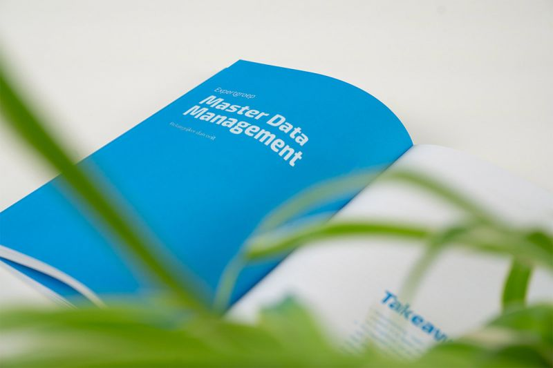 Bluepaper 2020 Master Data Management
