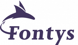 Fontys Tilburg - Digital Business Concepts